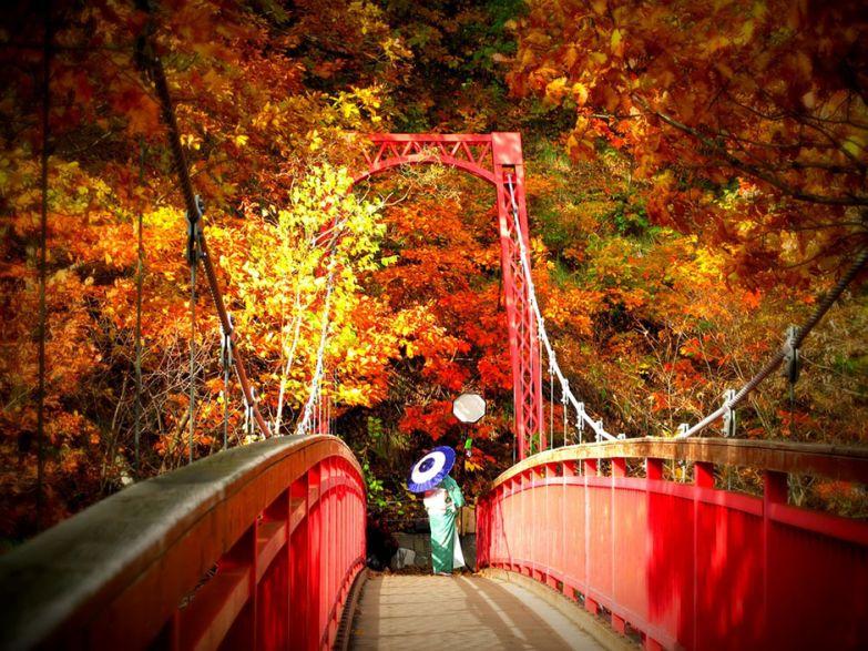 Хоккайдо, Япония