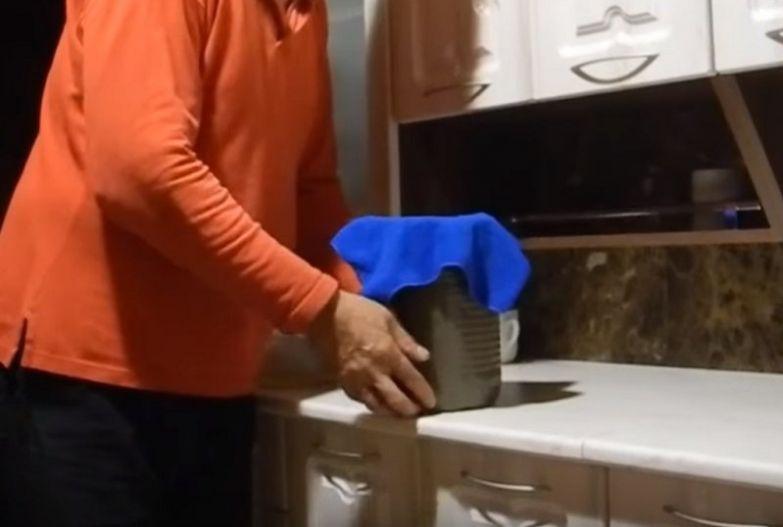 белый гриб дома