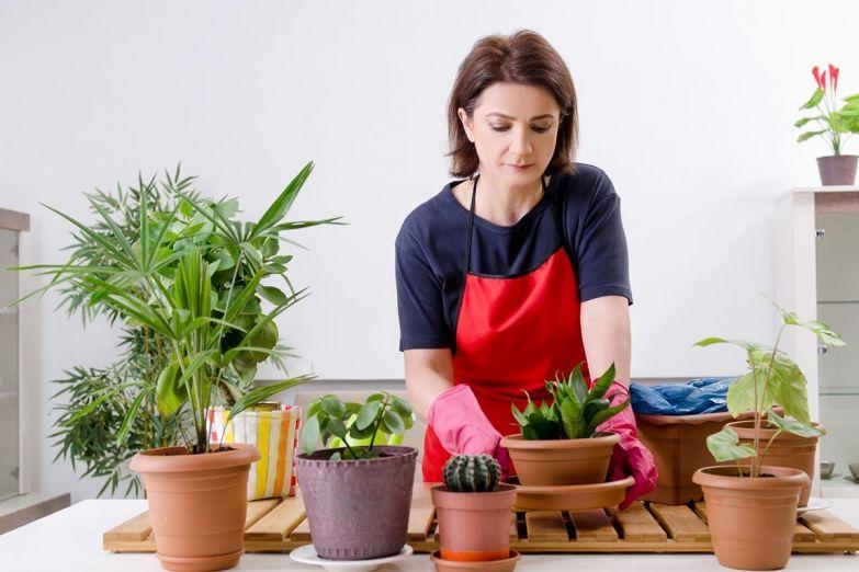 женщина с растениями