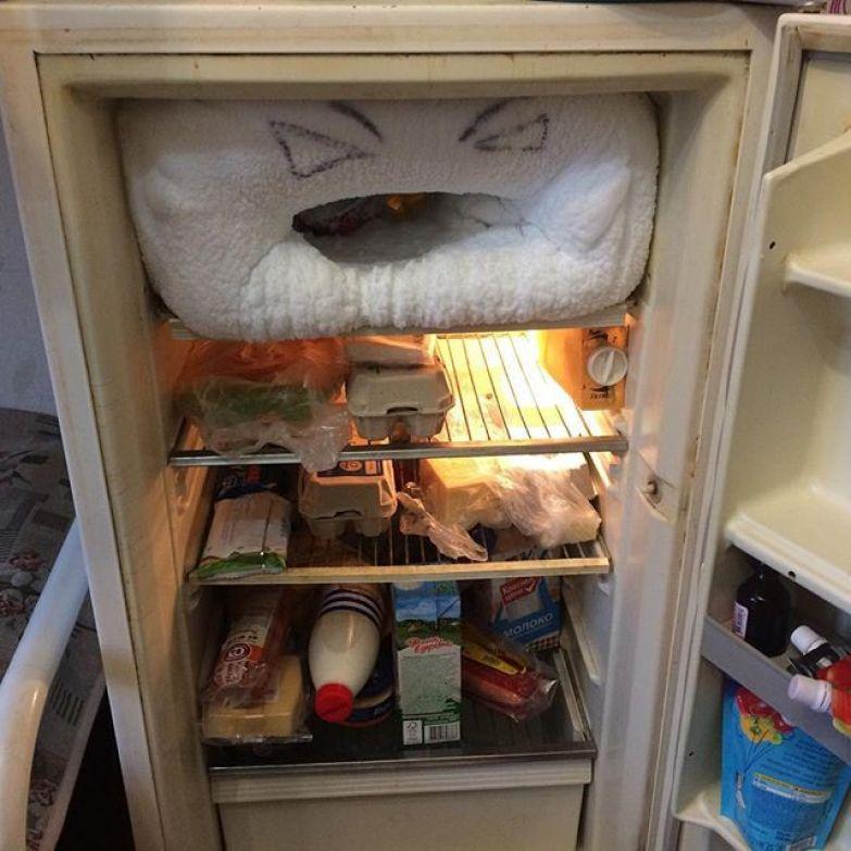 Суровый студенческий холодильник общага, общежитие, прикол, студенты