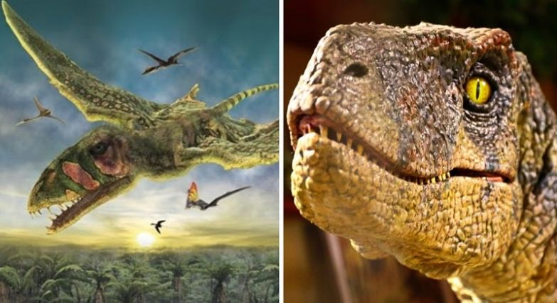 про динозавров