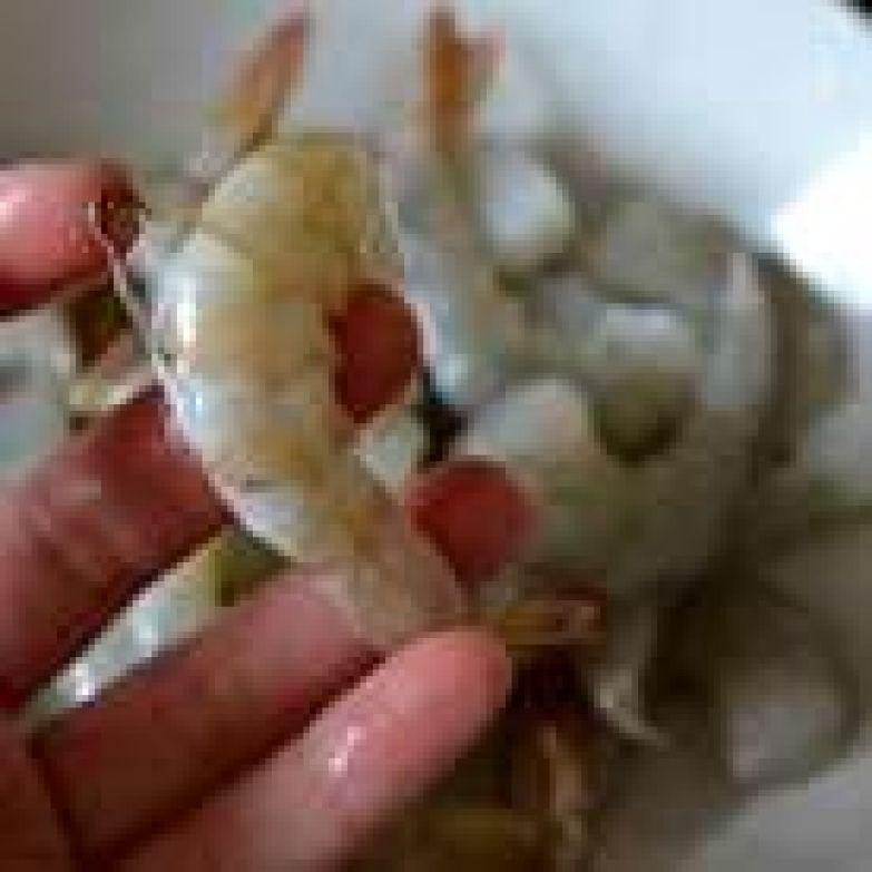 Подготовить креветки - очистить от панциря и удалить кишечную вену, аккуратно надрезав креветки вдоль по спинке. Если хотите, хвостики можно оставить, так креветки выглядят симпатичнее в салате (это кому как нравится!)