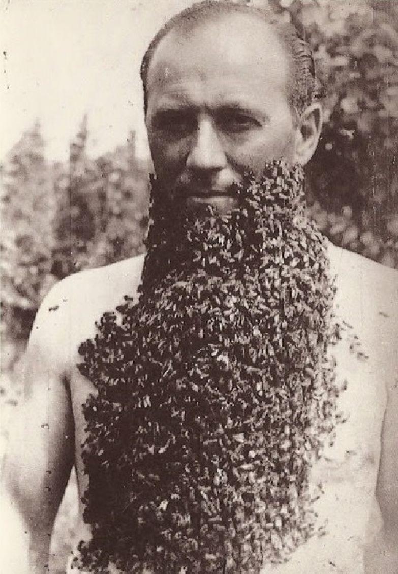 Мужчина с бородой из пчел. 1960-е