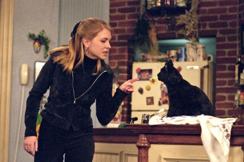 Почему кошки стали мерилом безумия и одиночества и стоит ли верить в этот стереотип