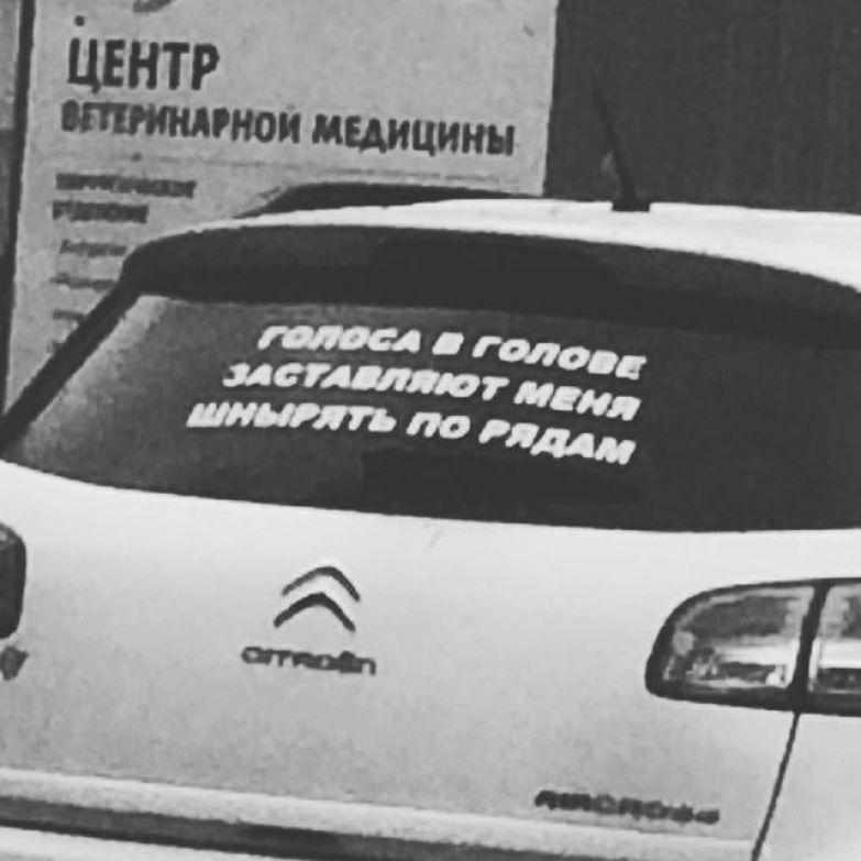 Чего только не встретишь на дорогах асфальт, дорожная разметка, надписи на машинах, прикол