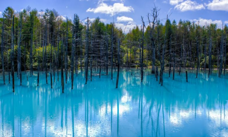 Мики Асаи. Голубой пруд, Хоккайдо, Япония.