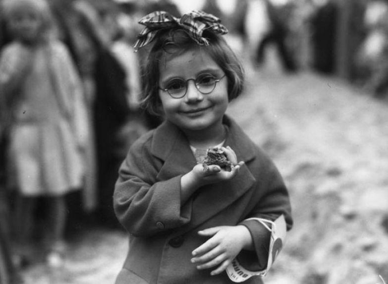 15. Маленькая девочка и ее питомец - жаба - на выставке домашних животных, Калифорния, 1936 г. архивные фотографии, лучшие фото, ретрофото, черно-белые снимки