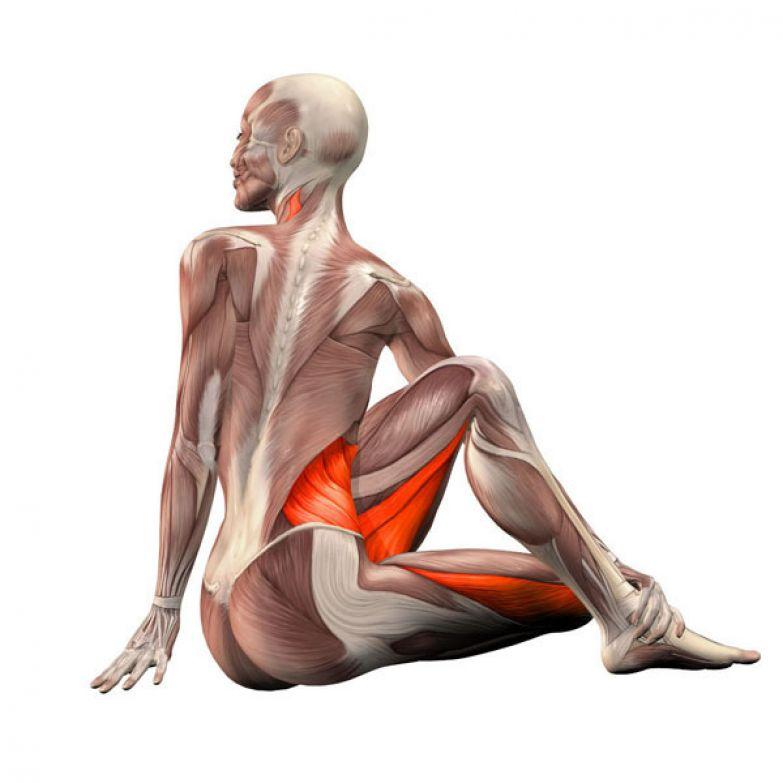 Методика растяжки коленных суставов fosta ортез на голеностопный сустав