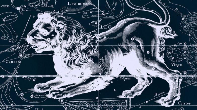 Миллионеры львы по гороскопу