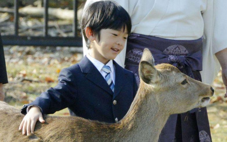 Принц Хисахито в парке Нара