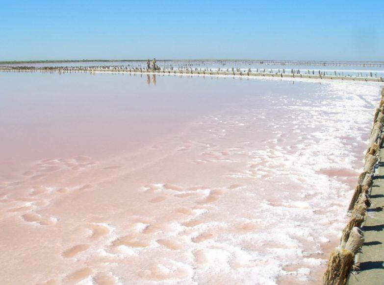 В Херсонской области возле села Григорьевка уникальное розовое озеро с рапой, которая чрезвычайно полезна.