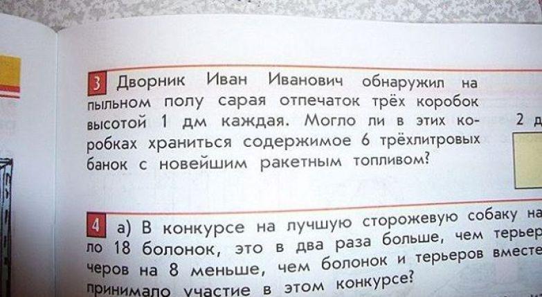 Задача о непростой судьбе простого российского дворника бред, задачи, прикол, учебник, школа