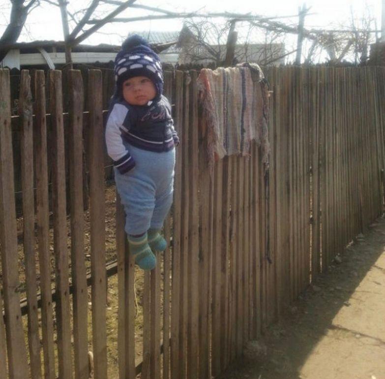 Слишком активный ребёнок очень эффективно деактивируется всего одним подвешиванием за штаны к забору. дети, коты, наказания, прикол, юмор