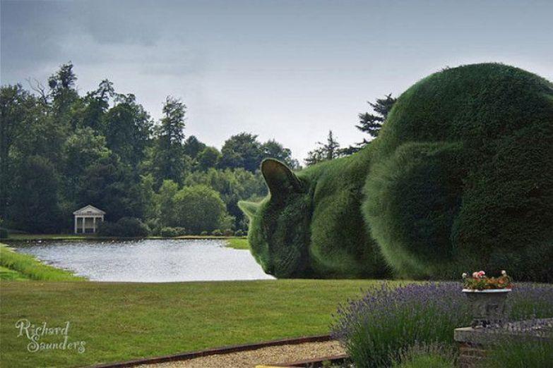 Зеленые топиарии в форме огромных котов.