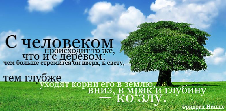 Цитаты 10