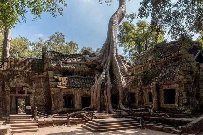 Ta Promh Temple In Cambodia