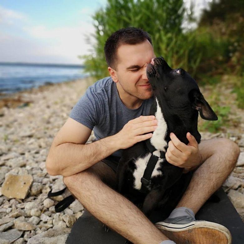 15 фактов о характере собак и их воспитании, которыми поделился известный кинолог