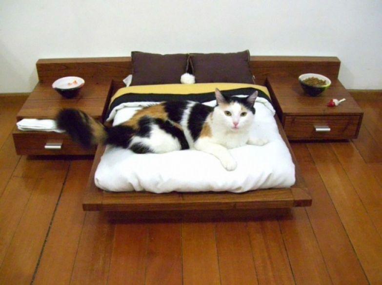 Кошачий интерьер 3
