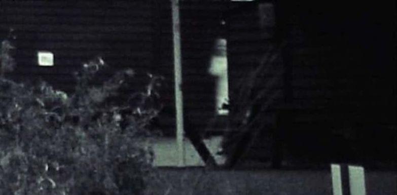 2. Призрак на свадьбе привидение, страх, фотография