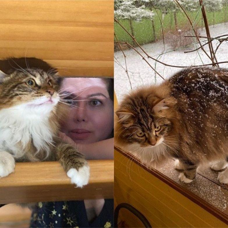 Справа — фото в Instagram Сергея, слева — у Ворожбит