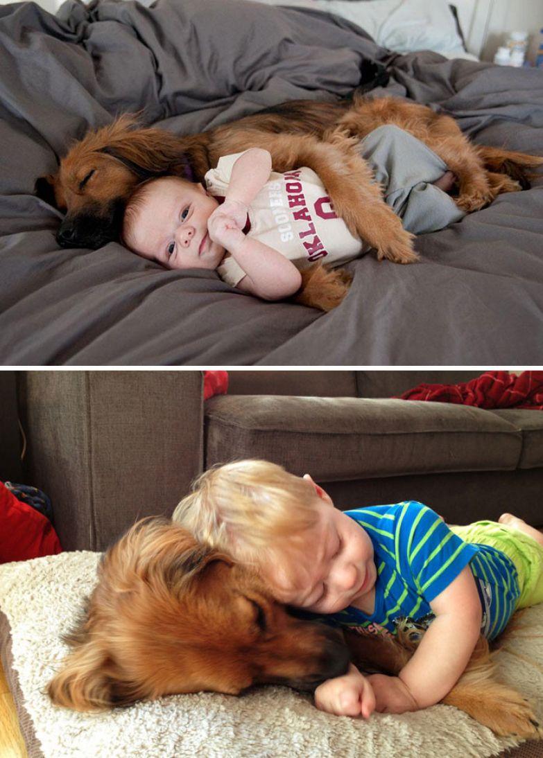Первые 9 месяцев вместе до и после, друзья, собаки, фото