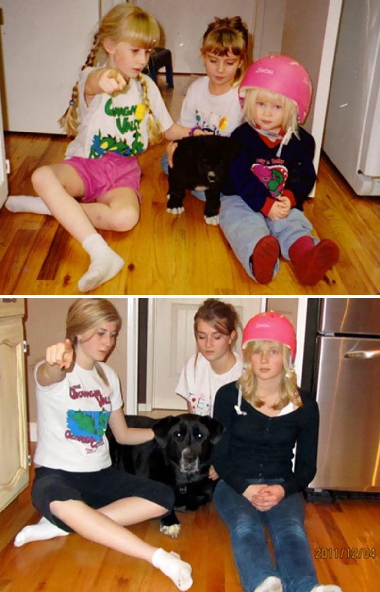 День, когда у нас появился щенок до и после, друзья, собаки, фото