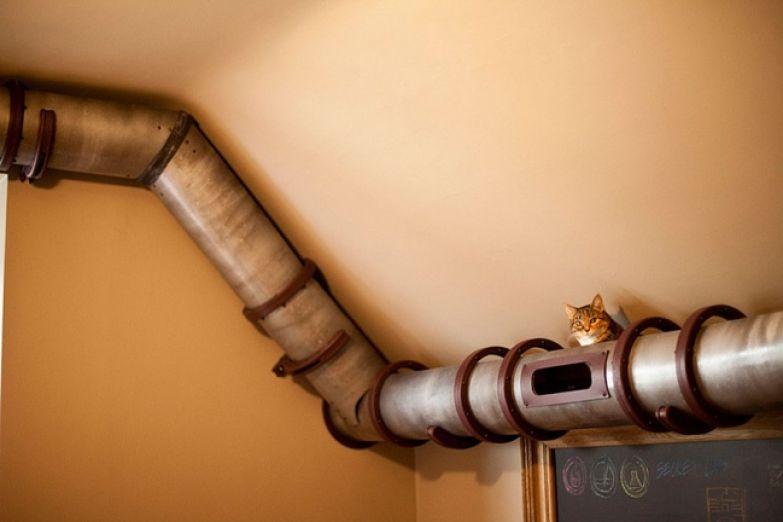 Кошачий интерьер 15
