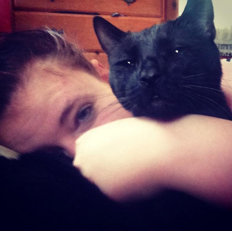 18. Когда в выходной кошка будит тебя в 6 утра жизнь, кошка, ситуация