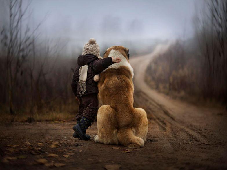 Крупные собаки и дети 18