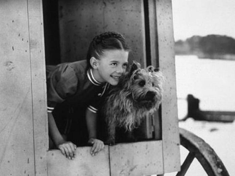 Натали Вуд снималась в кино с 4-х лет | Фото: kinopoisk.ru