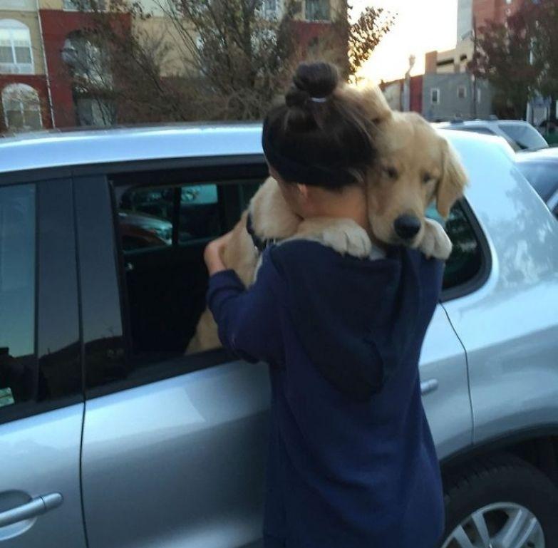 25 собак, которые покажут вам, что такое настоящая любовь