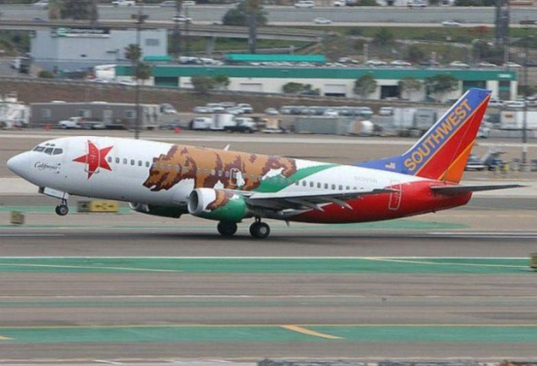 Американская бюджетная компания Southwest Airlines и их грозный медведь. необычные самолёты, раскраска, самолёты