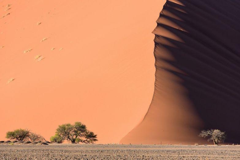 Пустыня Намиб без фотошопа, природа, удивительные фото, человек