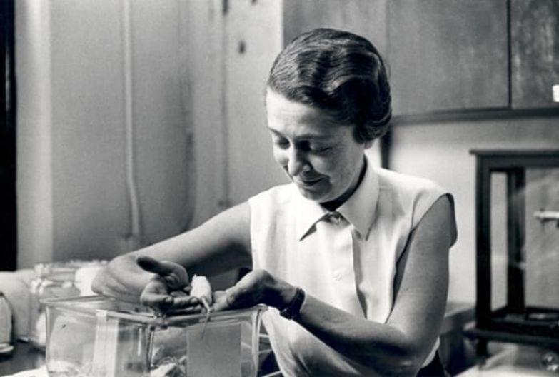 Женщина, удостоенная Нобелевской премии в области медицины | Фото: womanontop.ru