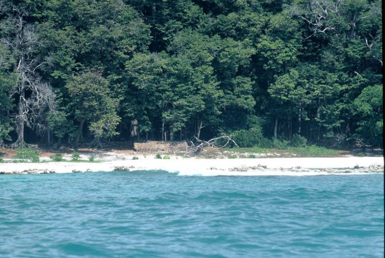 6. Северный Сентинельский остров (Андаманские острова) вокруг света, интересное, факты