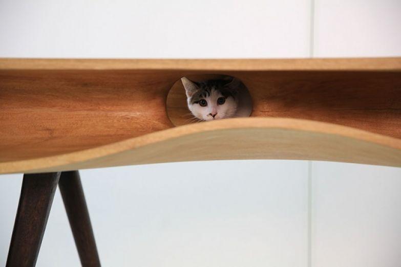 Кошачий интерьер 8