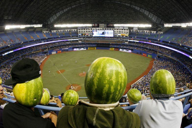 Группа фанатов из района Ватерлоо, Онтарио. Они действительно пришли на матч надев на голову пустые арбузы без фотошопа, природа, удивительные фото, человек