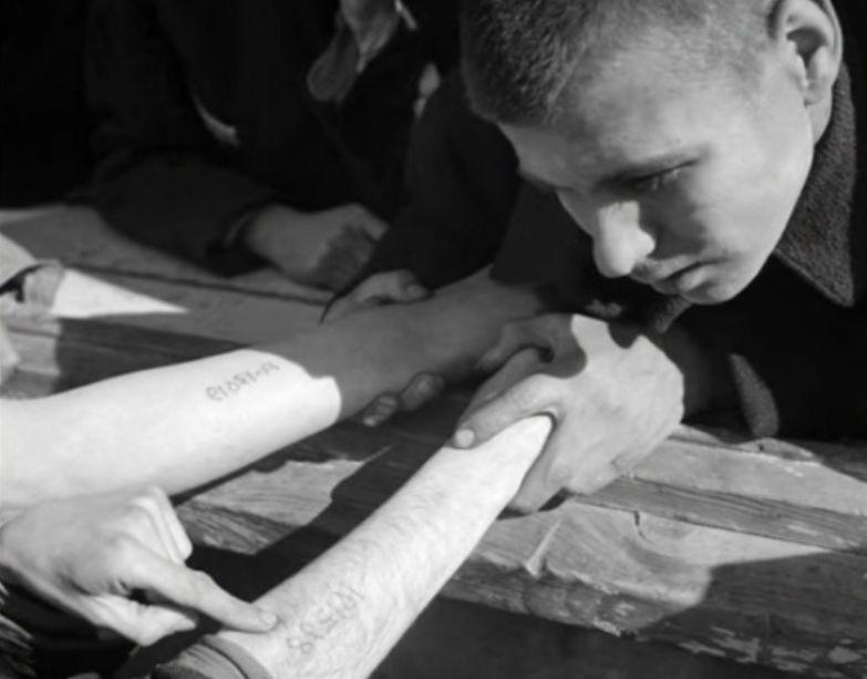 История татуировщика из Освенцима, который сумел не только выжить, но и найти свою любовь в концлагере