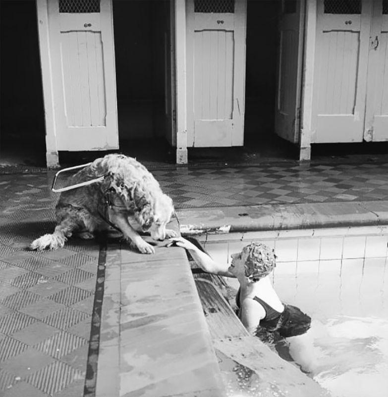 22. Слепая женщина расслабляется в бассейне под присмотром своего пса-поводыря, 1966 г. архивные фотографии, лучшие фото, ретрофото, черно-белые снимки