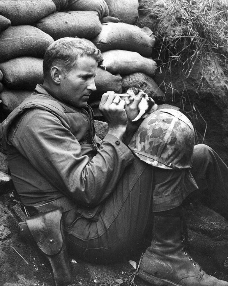 3. Американский военный кормит брошенного котенка. Снимок сделан во время Корейской войны архивные фотографии, лучшие фото, ретрофото, черно-белые снимки