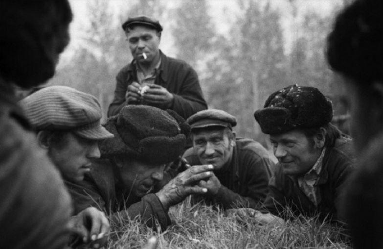 Совхоз «Еланский». СССР, Новокузнецкий район, 17 мая 1979 года.