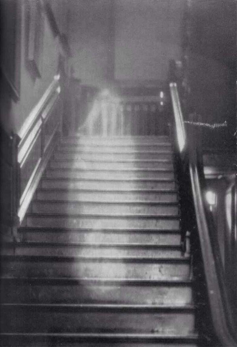 6. Коричневая леди привидение, страх, фотография