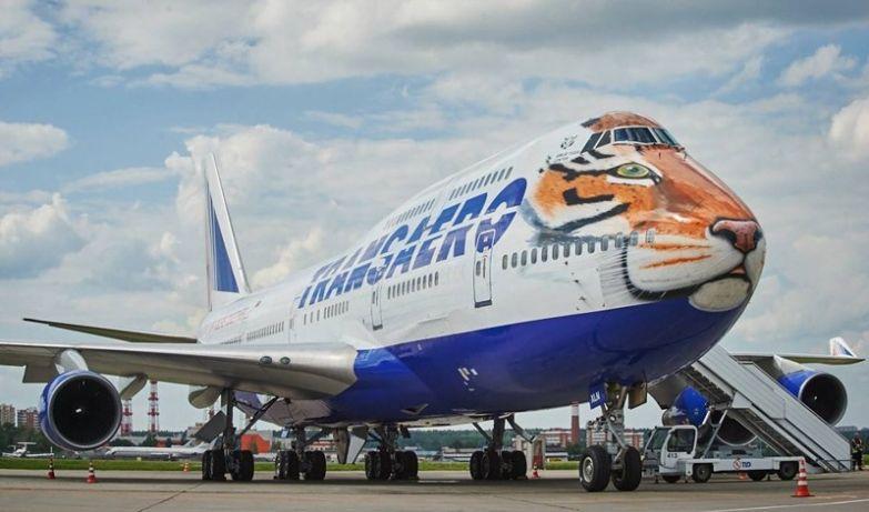 Многими любимая Трансаэро, когда она ещё существовала. необычные самолёты, раскраска, самолёты