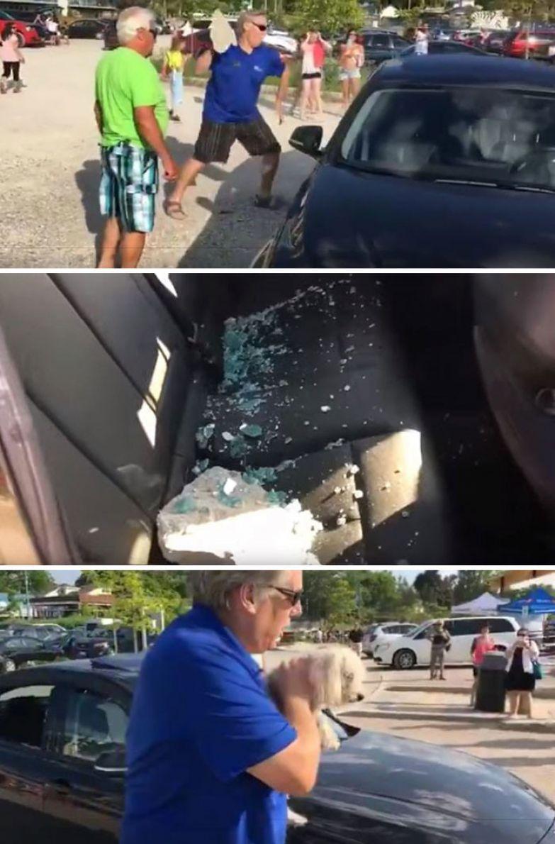 47. Мужчина разбил стекло машины,чтобы спасти собаку, умирающую от жары доброта, мир, поступок