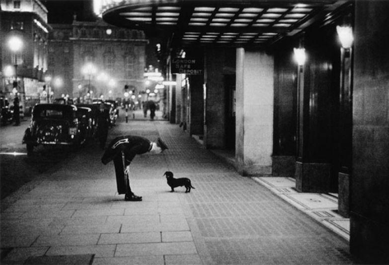16. Швейцар отеля разговаривает с маленькой таксой, Лондон, 1938 г. архивные фотографии, лучшие фото, ретрофото, черно-белые снимки