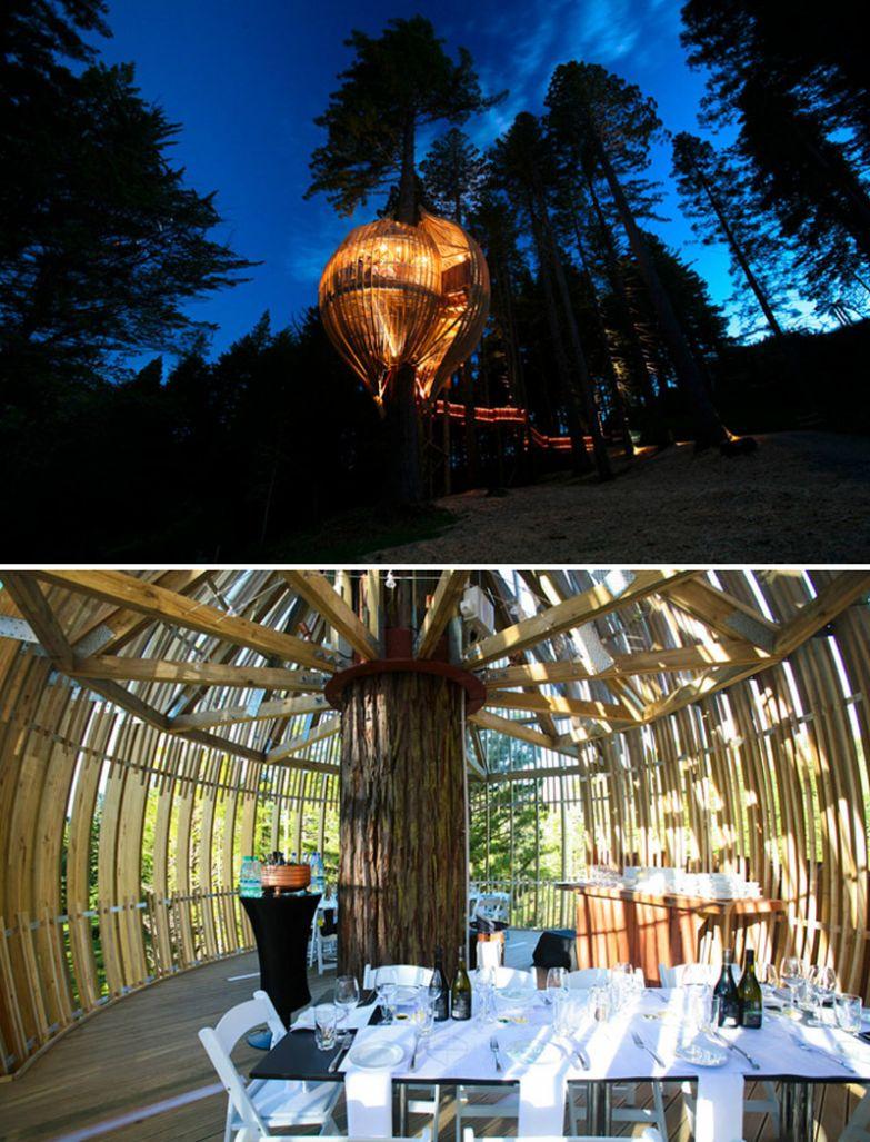 Ужин в домике на дереве, Redwoods Treehouse, Уоркуэрт, Новая Зеландия мир, подборка, ресторан