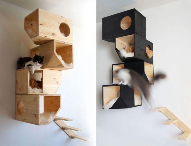 Кошачий интерьер 32