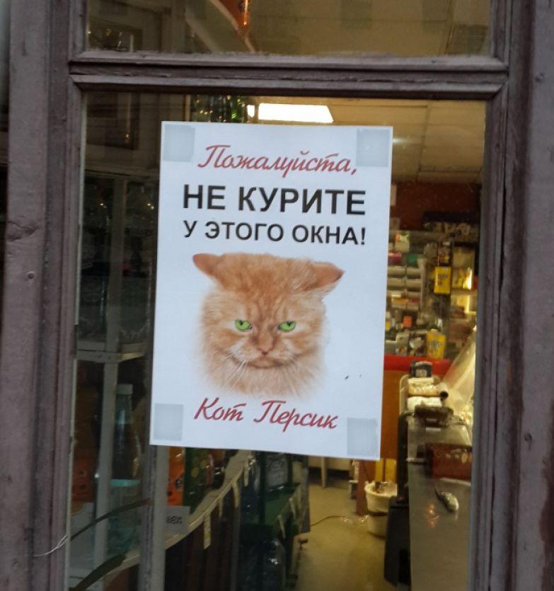 mainfun.ru