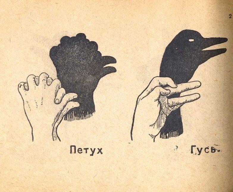 Как правильно сложить руки чтобы сделать тени животных. интересности, познавательное, полезное, приколы
