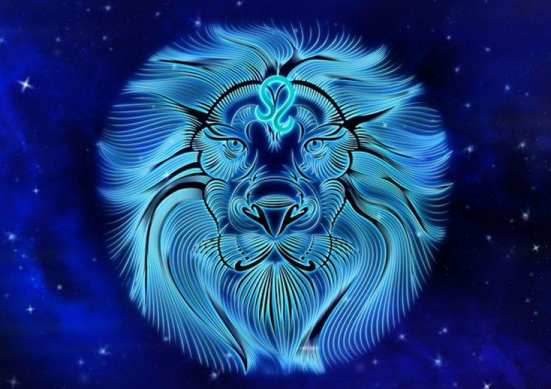 Львам нужно научиться признавать свои ошибки